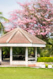 De-focus of Pavilion with pink trumpet tree Stock Images