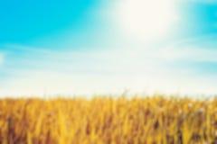 De-focused nature background Stock Image