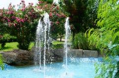 De fontein in de tuin Stock Fotografie