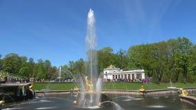 De fontein ` tearing Samson de zonnige leeuw` s mond `, kan dag Peterhof stock video