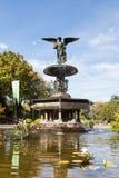 De Fontein van Bethesda in Central Park Royalty-vrije Stock Afbeeldingen