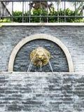 De fontein van de leeuwmuur stock afbeelding