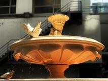 De fontein van het close-upwater Royalty-vrije Stock Fotografie