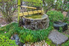 De Fontein van het Tsukubaiwater in Japanse Tuin bij kita-in Tempel, Kosenbamachi, Kawagoe, Saitama, Japan in de lente Met sakura Stock Fotografie