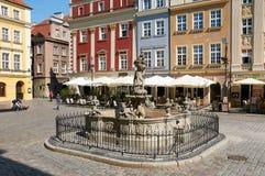 De fontein van Proserpina, oud Marktvierkant poznan Royalty-vrije Stock Foto's