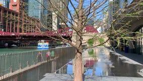 De forenzen en de toeristen lopen op de Rivier van Chicago riverwalk, waar een fontein van het plonsstootkussen tot bezinning van stock video