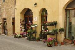 De forntida gatorna med fönstret av shoppar lite sälja blommor i krukor, Royaltyfri Fotografi