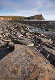 De fossiele jacht op de kustlijn van Dorset Royalty-vrije Stock Afbeeldingen