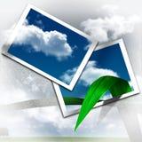 De foto's doen opleven het beeld Stock Fotografie