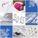 de foto's van 2015, van de sneeuw en van de winter Stock Fotografie