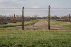 De foto toont prikkeldraad bij het concentratiekamp van Auschwitz Birkenau, het kamp die van de Nazidood terug naar WW2 dateren stock afbeelding