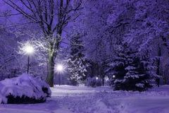 De foto van de de winternacht Royalty-vrije Stock Afbeeldingen