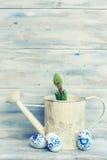 De foto van de hyacintbloem Stock Afbeelding