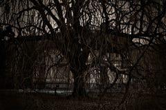 De foto van de mysticus van het oude lege huis. Stock Foto's