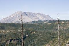 De Foto van de voorraad van de Wedergeboorte van een Vallei, dichtbij Onderstel St. Helens stock foto's