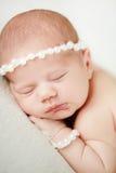 De foto van een pasgeboren baby krulde omhoog het slapen op een deken Stock Foto