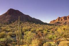 De foto van het reistoerisme van toneel de woestijnlandschap van Arizona, de V.S. royalty-vrije stock fotografie