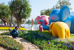 De fotograaf neemt olifantsmodel in ASEAN-Bloemfestival 2014 in Chiang Rai Thailand Royalty-vrije Stock Foto