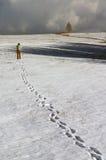 De fotograaf van de winter Stock Foto's