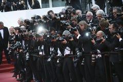 De fotografen wonen het onderzoek bij royalty-vrije stock foto's
