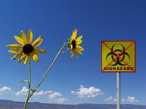 De Fotografie die van de voorraad Veilig Milieu illustreert Stock Foto's