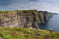 De fotografie van het landschap, landelijke aard Ierland Stock Afbeeldingen