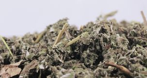 De frambozen drogen in massa stock videobeelden