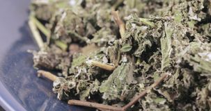 De frambozen drogen in massa stock footage
