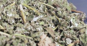 De frambozen drogen in massa stock video