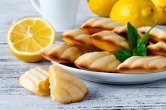 De Franse gepoederde suiker en de zeef van Madeleine koekjes op natuurlijk Royalty-vrije Stock Fotografie