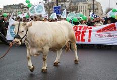 De Franse landbouwers slaan in Parijs Stock Foto's