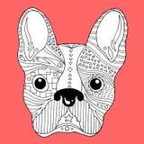De Franse schedel van de buldogsuiker, frenchie leuke honddag van de dode, vectorillustratie Stock Afbeeldingen