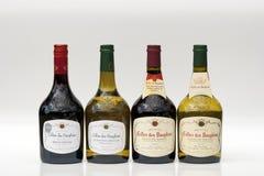 De Franse wijn van de Rhône Stock Afbeeldingen