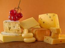 De fromage toujours durée Photographie stock libre de droits