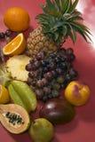 De fruit toujours durée photo stock