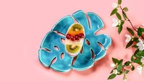 De fruitcake op een blauwe ceramische die plaat met met de lente bloeit jasmijn, op roze achtergrond wordt geïsoleerd Hoogste men royalty-vrije stock foto's