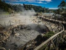 De Furnas vulkanische thermische lentes stock foto