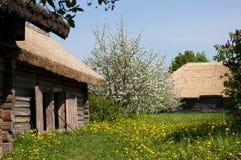 De gamla byhusen och blomstraträden Arkivbild