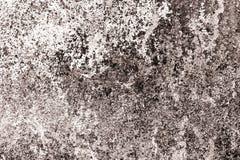 De gamla vita väggarna med bruna skuggor Arkivfoto