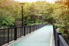 De gang op de brug Stock Afbeelding