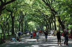 De Gang van de dichter in Central Park, de Stad van New York Royalty-vrije Stock Afbeelding