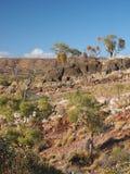 De gang van de dolomietaard dichtbij Ellery Creek royalty-vrije stock afbeeldingen