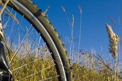 De gang van de fiets Royalty-vrije Stock Foto