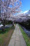 De Gang van de filosoof, Kyoto Stock Foto's