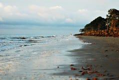 De gang van de ochtend op het strand royalty-vrije stock afbeelding