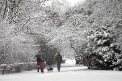 De gang van de sneeuw Stock Foto