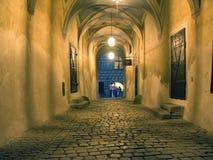 De gang van het kasteel, Czesky Krumlov Stock Afbeeldingen