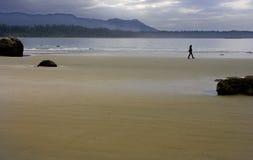 De Gang van het strand Royalty-vrije Stock Foto's
