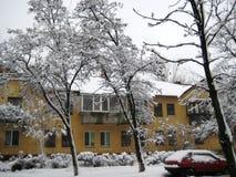 De gang van de de wintermiddag langs een sneeuwstadsstraat stock foto