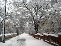 De gang van de de wintermiddag langs een sneeuwstadsstraat royalty-vrije stock fotografie